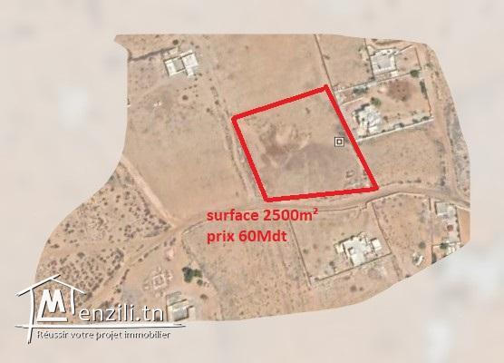 terrain a vendre Djerba de 2500 m2