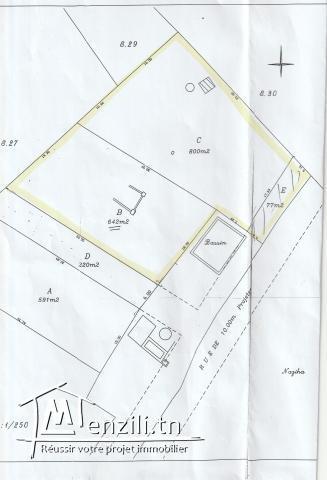 Terrain nu de 1519 m² à Birbouregba Hammamet