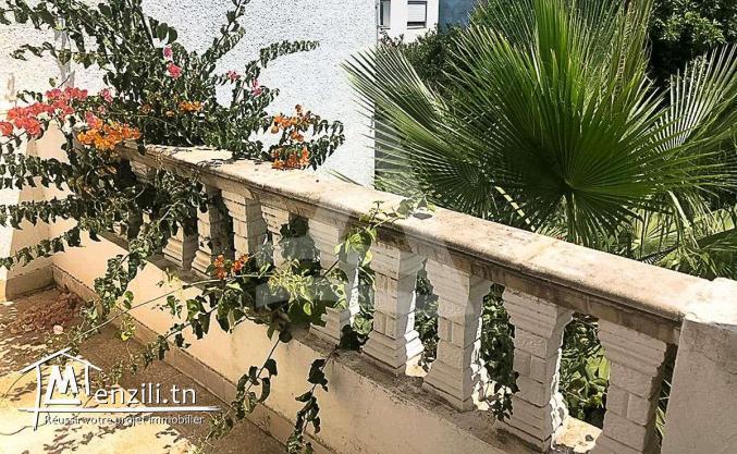 Location d'un duplex à la Marsa Tunisie