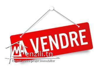 a vendre  magnifique maison R+1 à Rades Milien