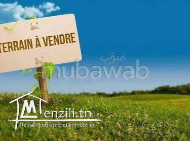 A vendre terrain Avant la plage de Ruwad,