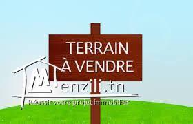 A vendre terrain 1100 m² vue sur mer à Tezdaine Djerba Tunisie