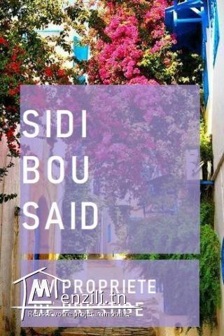 sidi bou said av extraordinaire propriété