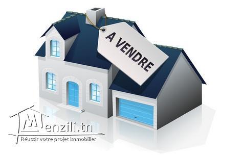 Maison avec garage a vendre