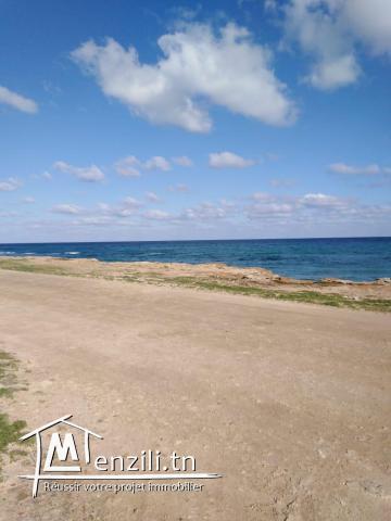 Terrain à vendre à Kélibia 217 m²