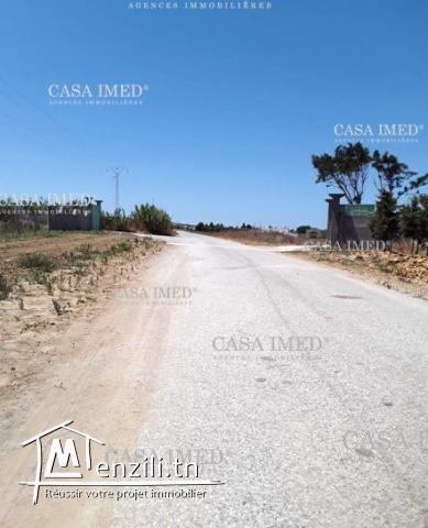 أرض طريق قليبية للبيع:100م²