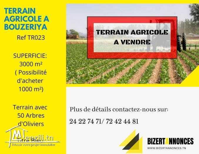 à vendre, terrain agricole à Bouzaria Bizerte.