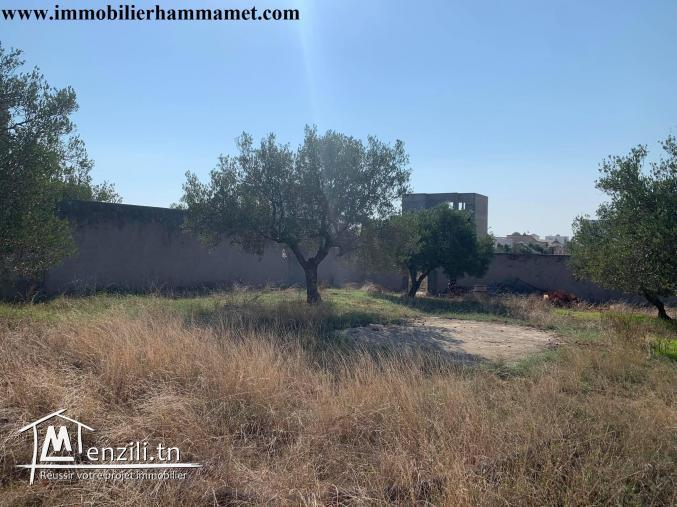 Terrain Salah 741 m² à Hammamet Nord