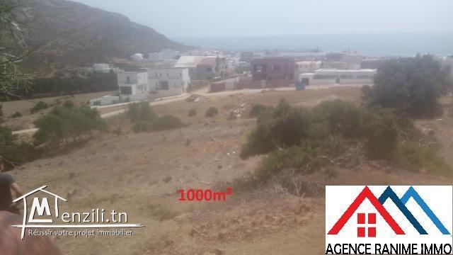 Terrain 1000m² a la plage d'el haouaria 8045