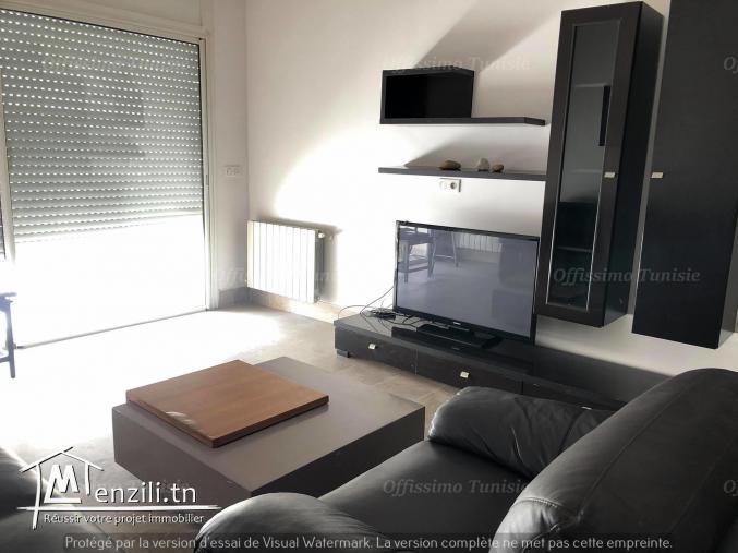 Appartement s+2 meublé haut standing lac 2