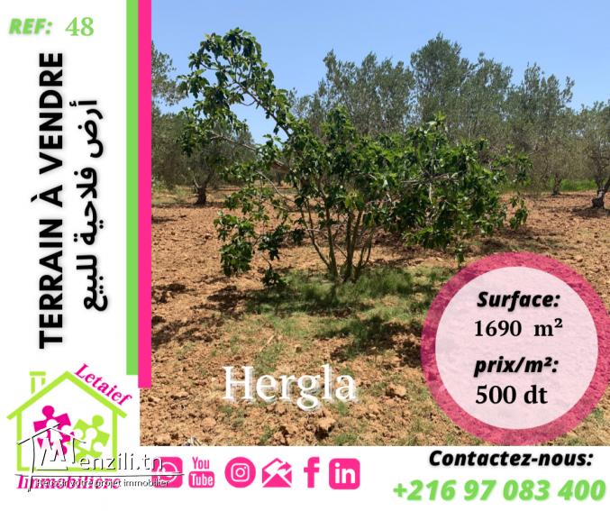 RFT TA 48 : #A_Vendre un #Terrain a hergla