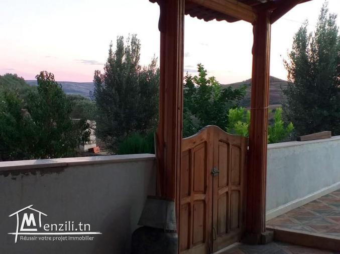 A vendre terrain agricole Bizerte Mateur Superficie: 44hectares 54809728