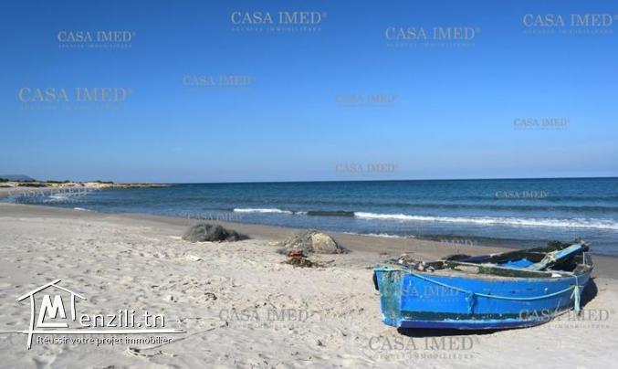 أرض قريبة من بحر #كركوان قليبية
