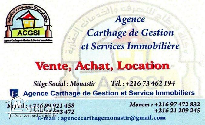Agent Immobilier Professionnel
