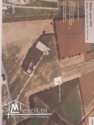 Terrain a vendre a Raoued route kalaat andalos