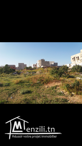 قطعة ارض للبيع في تونس العقبة قريبة من الدندان