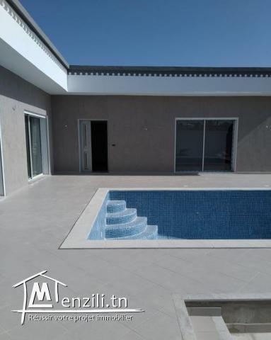 Villa avec piscine V439
