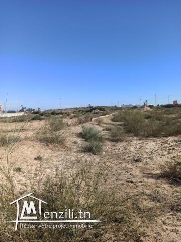 Terrain vue mer disposant d'un titre de propriété et permis de bâtir Djerba