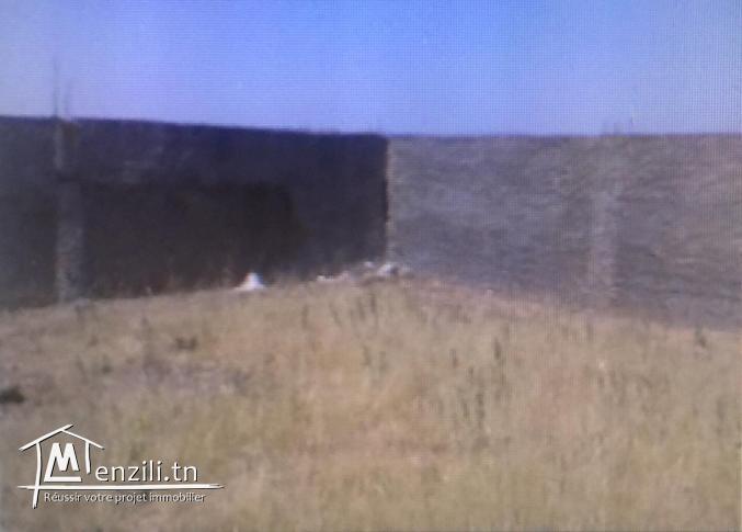 Terrain a vendre de 6667 m2 cloturé a jbel ouest zaghouan