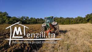 une ferme agricole