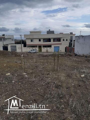 Terrain  250 m²  a vendre cité el waha2