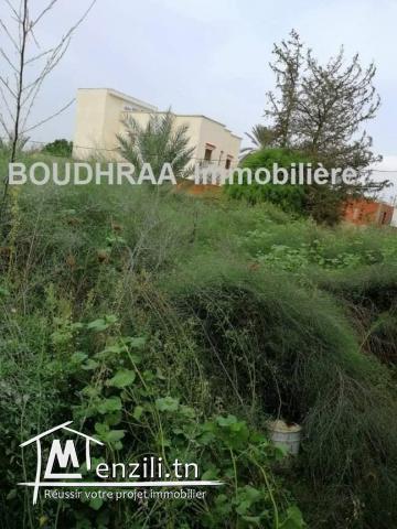 Vente un Terrain à Borj Touil