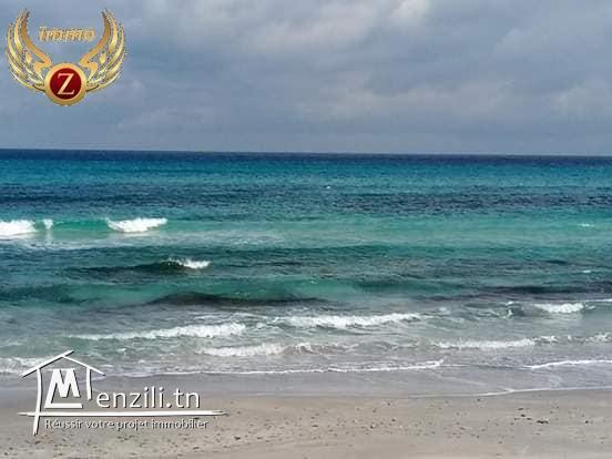 lotissement à kelibia 1er position de la plage