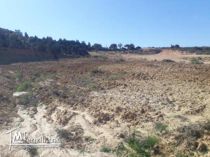 à vendre Un lot de terrain d'une superficie de 1800 m2