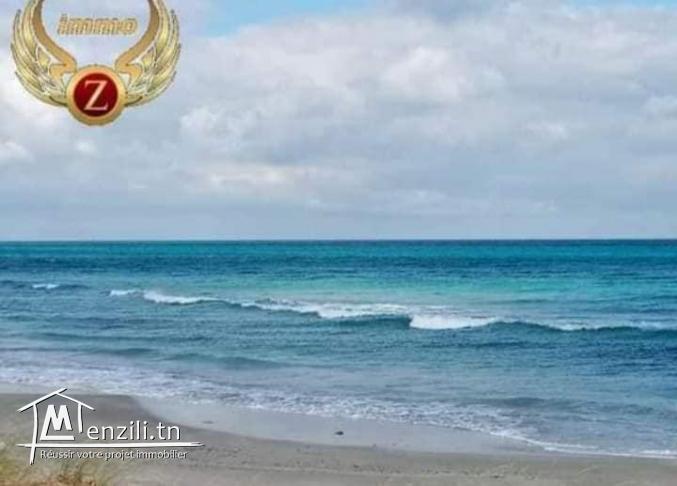 Lot 1ére position de la plage à Kélibia.Appelez: 90611201