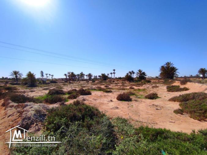 Terrain vue mer à sidi Mahrez titre bleu + permis de construction