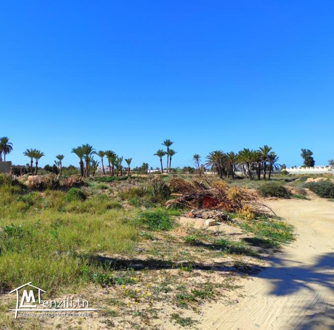 Terrain les palmiers titre bleu à 300 m de la plage