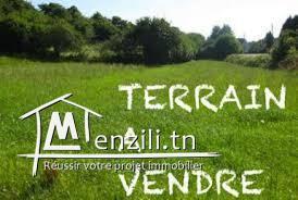 Terrain Ennassr 2