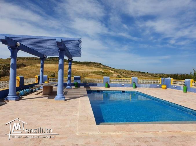 A Vendre ferme de 8 hectares avec piscine à Mornag