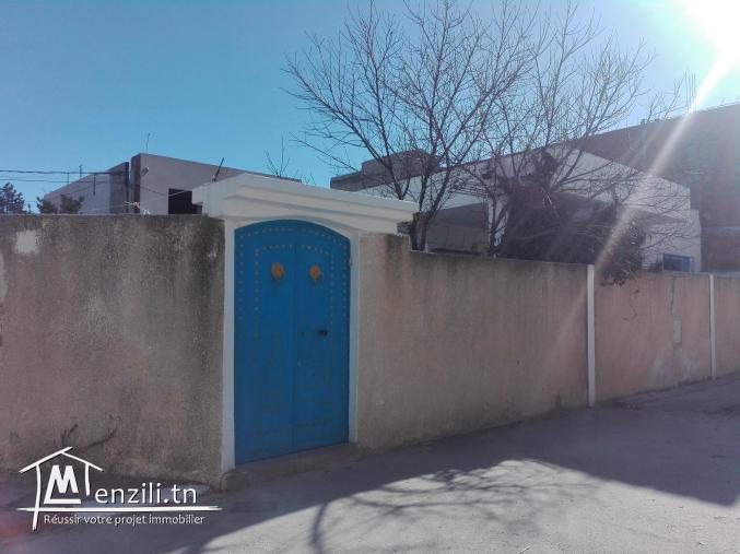 Belle maison+Studio dans un quartier calme à siliana