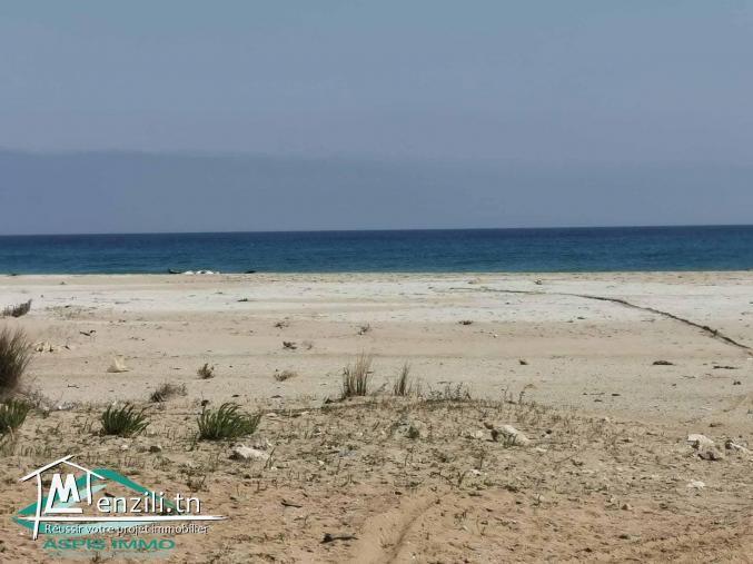 Terrain d'habitation 500 m² pieds dans l'eau à plage chraf Kelibia