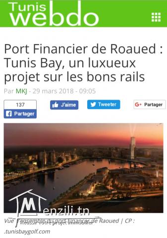 Terrain prés du port financier à Raoued