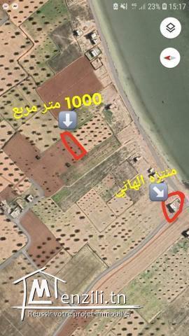Terrain a vendre plage Hazeg (الحزق-صفاقس )