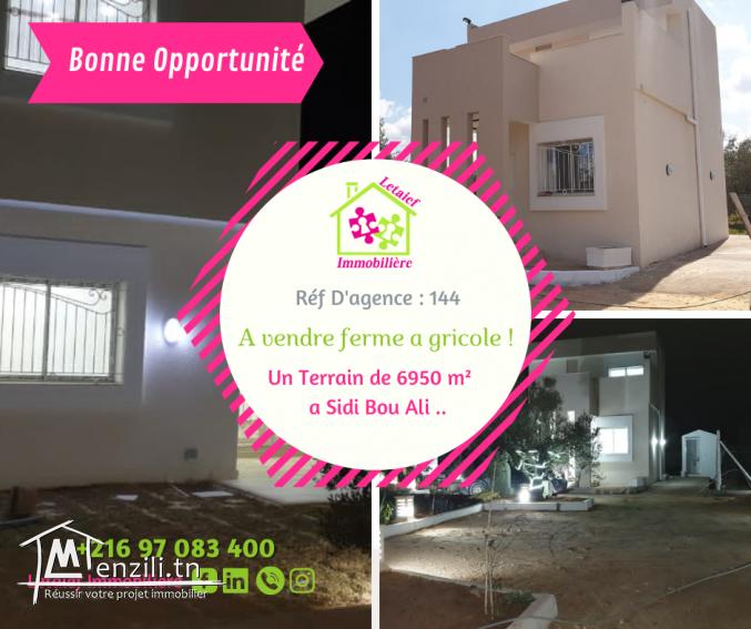 Réf D'agence 144 Terrain a Sidi Bou Ali