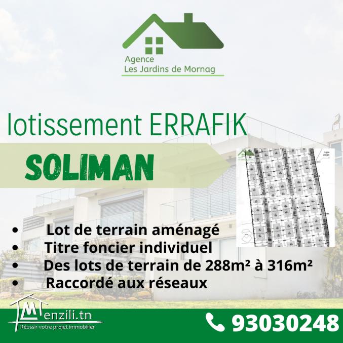 Des lots de terrains viabilisés à Soliman