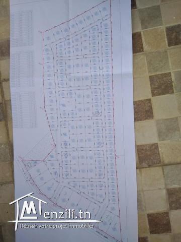A vendre terrains à Borj El Amri