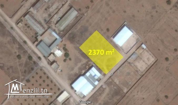 Terrain sur la route de Mahdia km 10,5 2370 m2