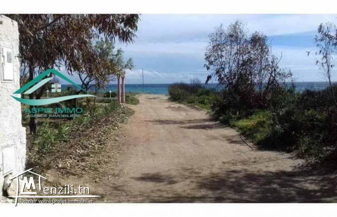 villa S+4 premier position à 50 mètres de plage kerkouene Kelibia