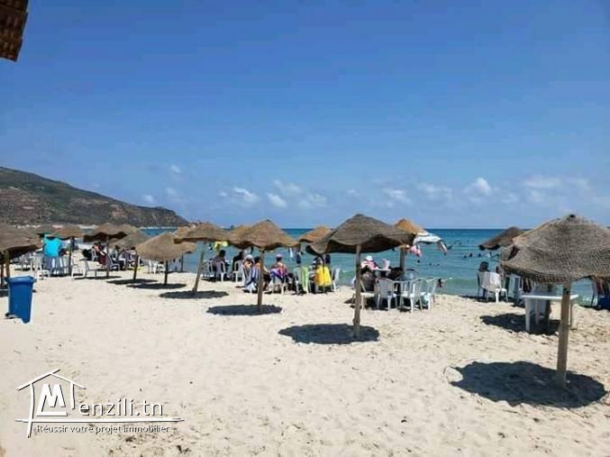 plage el haouaria