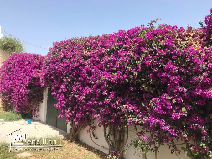 A Louer villa s5 avec Jardin à La Marsa