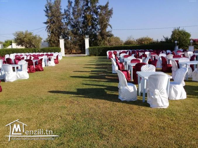 للبيع 300 غلاف كرسي للاعراس في حالة جيدة