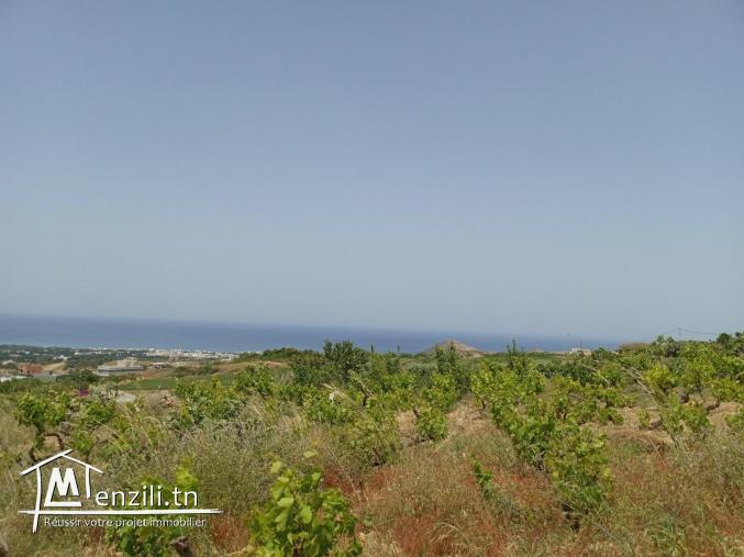 Terrain à RAFRAF de 680m² vue sur mer, constructible et accessible par voiture.