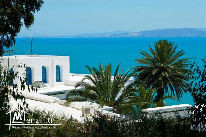 A Vendre terrain de 8517m² vue mer à Sidi Bou Saïd