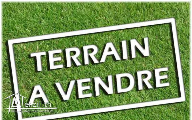 #Vente : #Terrain_agricole_à_Sidi Bouali