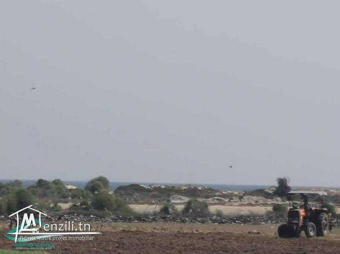Terrain d'habitation à hammam ghzeez  400 mètres de la plage