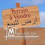 terrain a vendre à teboulba